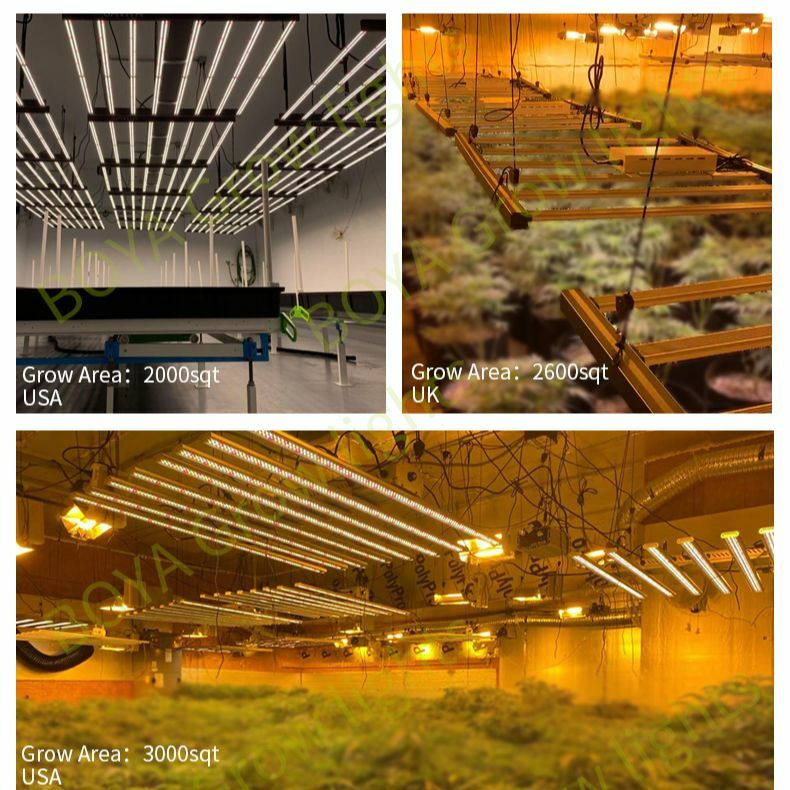 شرائط اضاءات ليد IP65 الطيف الكامل LM301B LM301H المائية LED تنمو ضوء 640 واط 800 واط العنكبوت LED وحدة إضاءة للنباتات