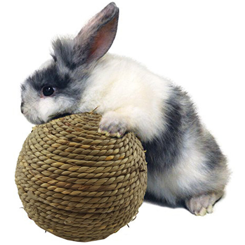 6 سنتيمتر الحيوانات الأليفة مضغ لعبة الأرنب العشب الطبيعي الكرة ل الأرنب الهامستر غينيا خنزير لتنظيف الأسنان مستلزمات الحيوانات الأليفة هبو...
