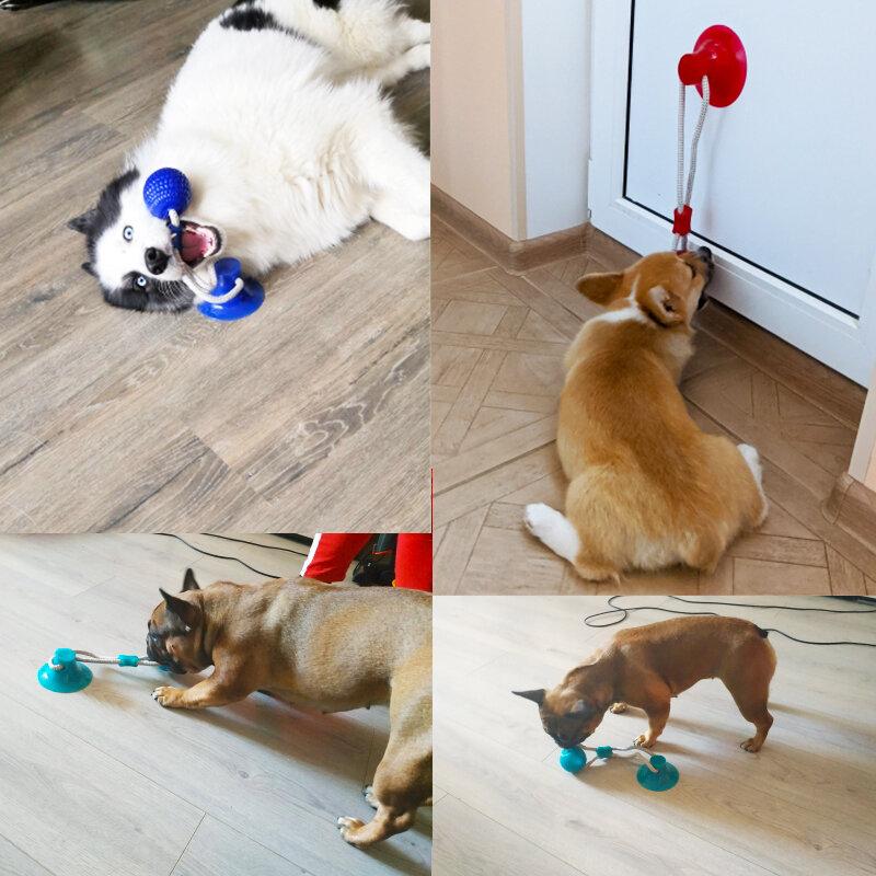 كلب لعب الحيوانات الأليفة جرو التفاعلية شفط كأس دفع TPR العاب كروية لدغة المولي لعبة مطاطا الحبال لون عشوائي
