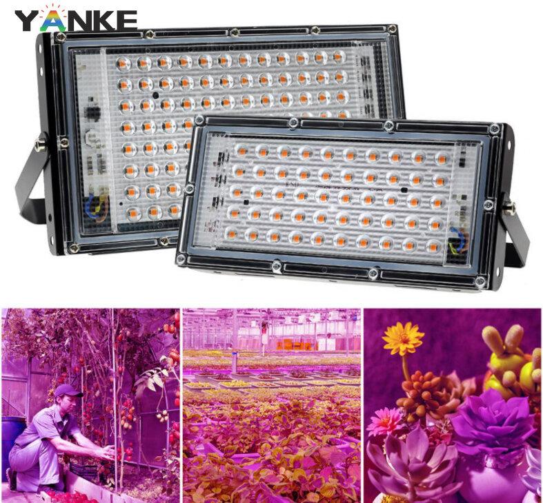 220 فولت 50 واط 100 واط IP42 SMD2835 LED تنمو ضوء الطيف الكامل ضوء ل الدفيئة المائية زهرة البذر فيتو مصباح مع الاتحاد الأوروبي التوصيل