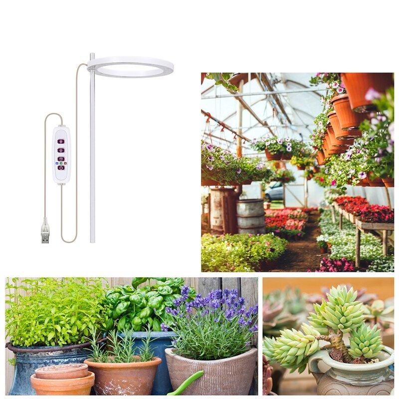 LED تنمو ضوء الطيف الكامل فيتو تنمو مصباح USB الملاك الدائري مصباح ل العصارة ، زهرة النباتات النمو