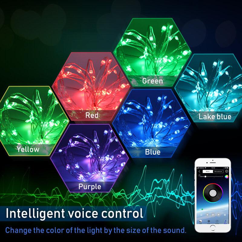 1 M-10 M USB RGB LED سلسلة أضواء في الهواء الطلق الجنية أسلاك إضاءة للأماكن الخارجية للماء المصابيح الطوق سلك LED أضواء الديكور عيد الميلاد حزب