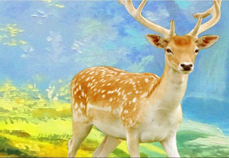ورق حائط صور ثلاثي الأبعاد مخصص ، ورق حائط ، مناظر طبيعية الغابة ، رسم ، ديكور حائط لغرفة المعيشة