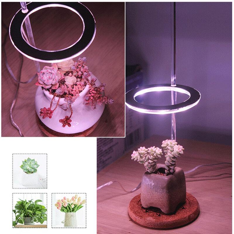 المنزل زهرة Succulet النمو LED تنمو ضوء النباتات الزهور تنمو صندوق الطيف الكامل phytolamp سطح المكتب مصباح
